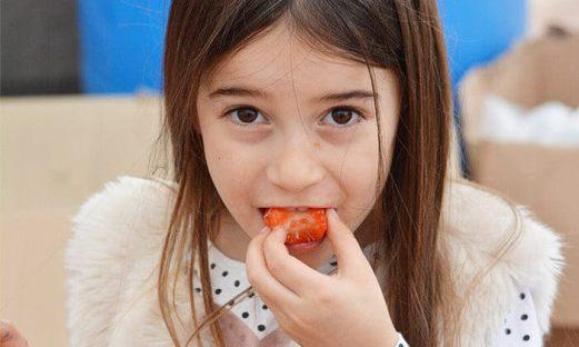 קטיף תותים משק 77.jpg