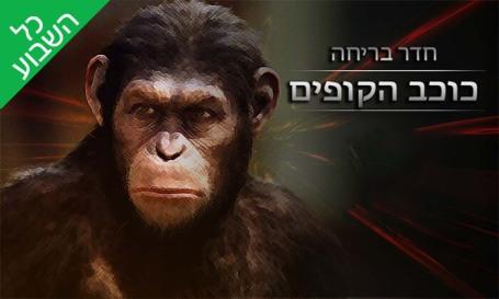 כוכב הקופים.jpg
